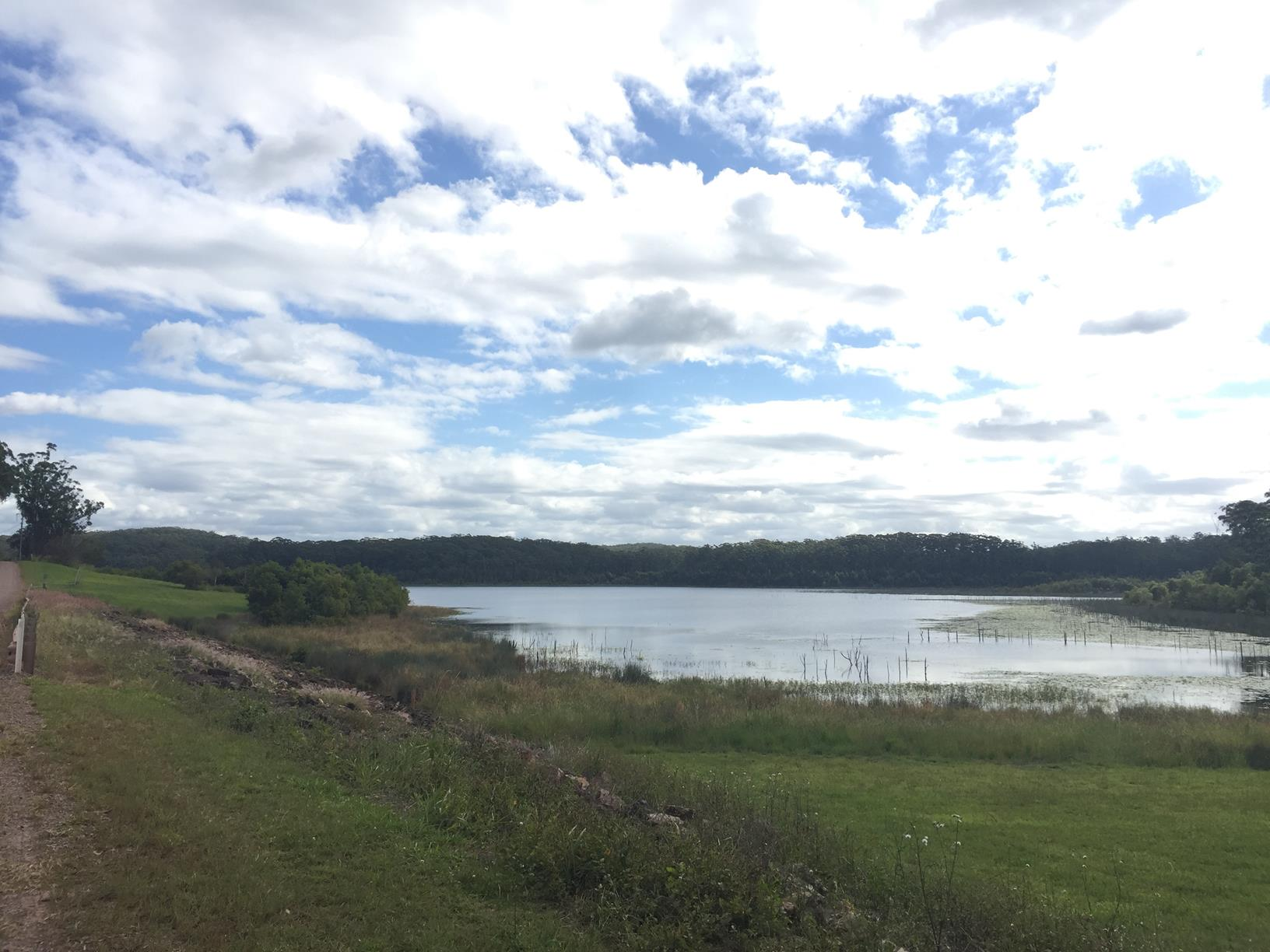 Trail Image for Cooloolabin Dam: Day Use Short Walk