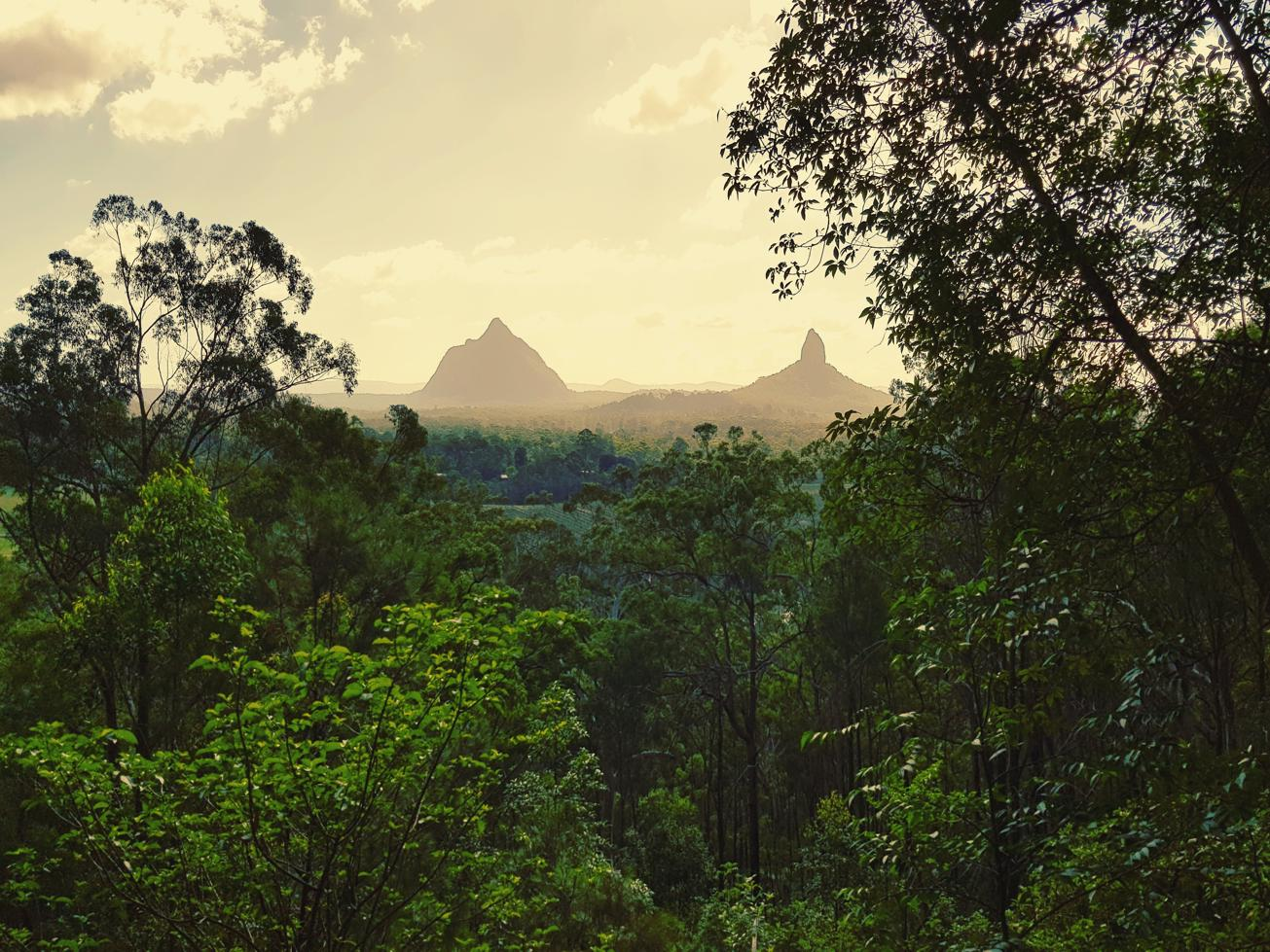 Trail Image for Glass House Mountains National Park: Tibrogargan Circuit