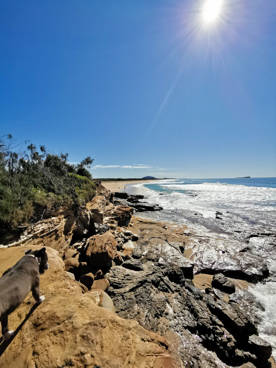 Trail Image for Pincushion Island Beach Walk