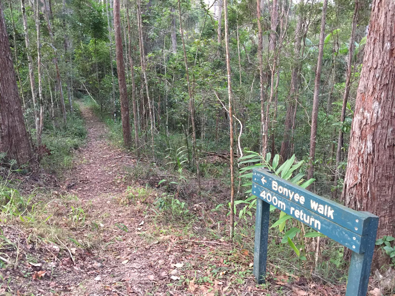 Trail Image for Mapleton National Park: Bonyee Walk
