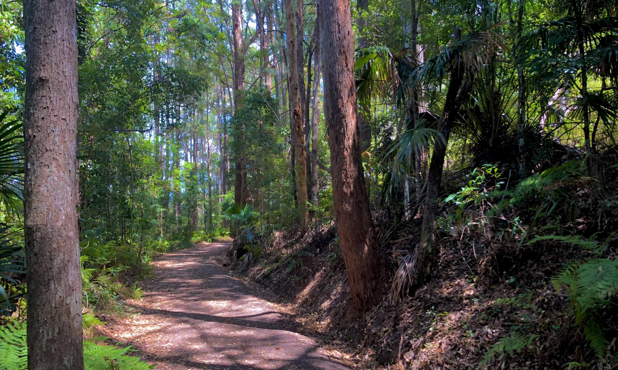 Trail Image for Buderim Tramway Trail