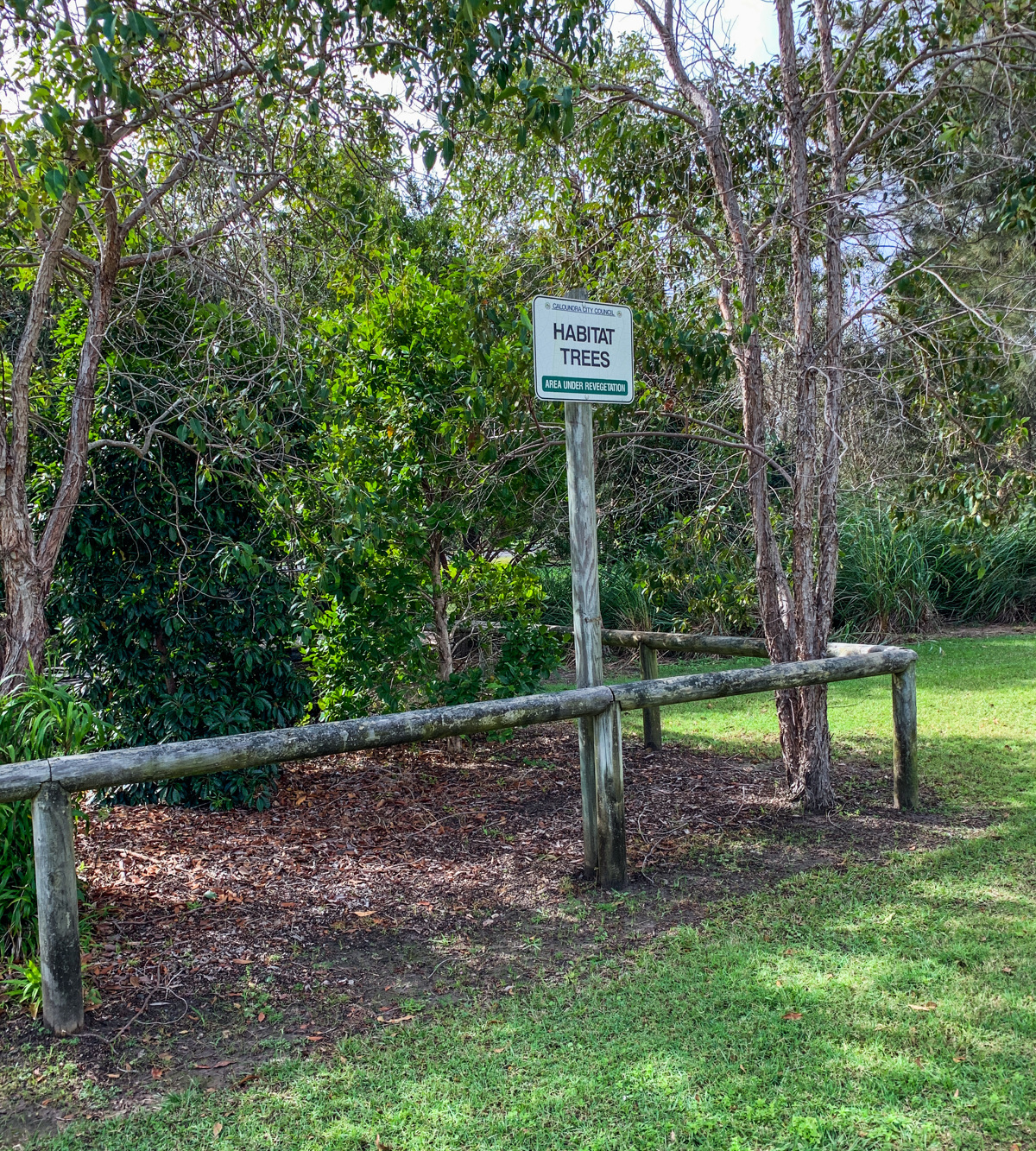 Trail Image for Currimundi South Arm Loop