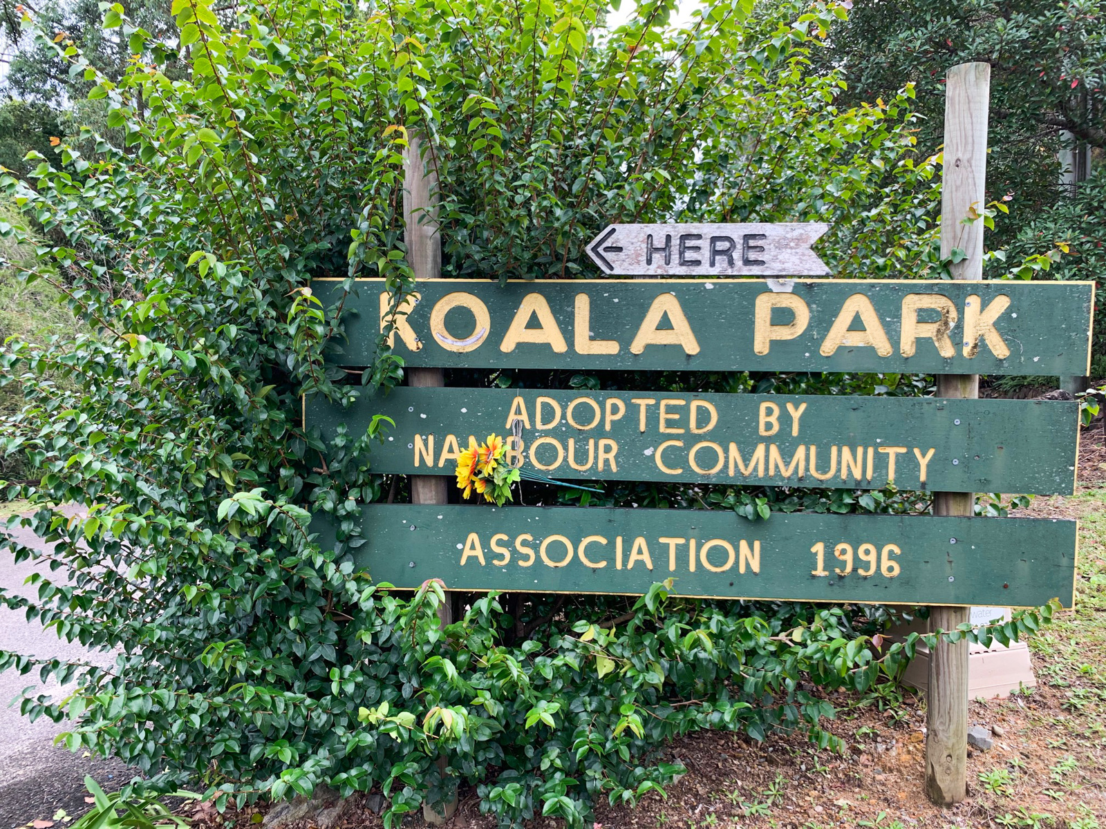 Trail Image for Koala Park Recreation Loop
